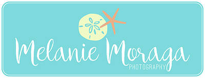 Photograph - Mm_logo by Melanie Moraga