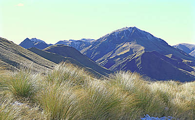 Photograph - Mmountain And Shiny Tussock by Nareeta Martin