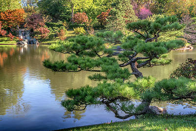 Photograph - Mo Bot Japanese Garden 7r2_dsc2725_10262017 by Greg Kluempers