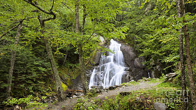 Photograph - Moss Glen Falls Summer by Alan L Graham