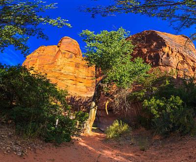Photograph - Moab Campsite by Jonathan Gewirtz