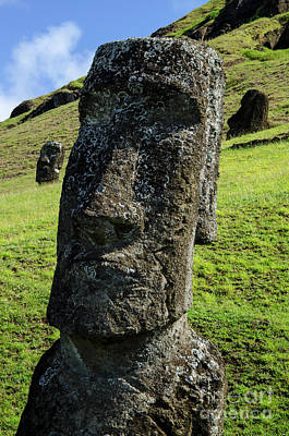 Photograph - Moai Rapa Nui 6 by Bob Christopher
