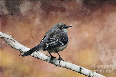 Digital Art - Mockingbird by Debbie Green