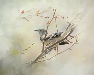 Mockingbird Digital Art - Mockingbird II by Mary Bellew