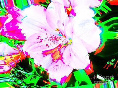Photograph - Mod Bloom by Jenny Revitz Soper