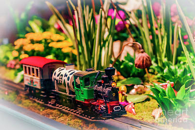 Photograph - Model Train Or Giant Flowers 0308t by Doug Berry