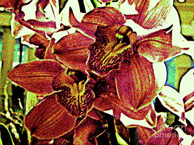 Digital Art - Modern Computer Art - Two Orchids by Merton Allen