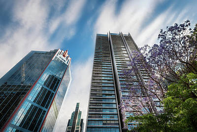 Photograph - Modern High-rise Buildings In Sydney City Center by Daniela Constantinescu