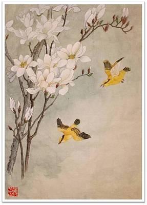 Mognolia Art Print by Ping Yan