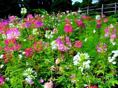 Digital Art - Mohonk Gardens #8 by Ed Weidman