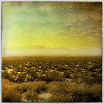 Photograph - Mojave Gold by Mark David Gerson