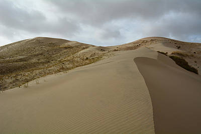 Photograph - Mojave Preserve Kelso Dunes by Kyle Hanson