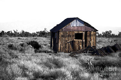 Photograph - Mojave Shack Fusion by John Rizzuto