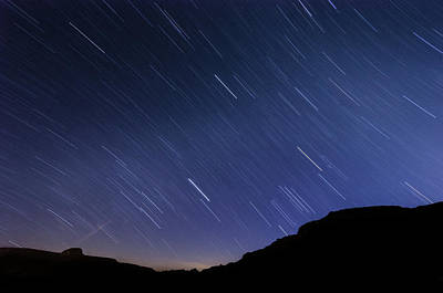 Photograph - Mojave Star Trails by Margaret Pitcher