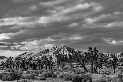 Photograph - Mojave Storm by Jeffrey Hubbard