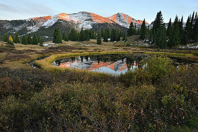 Photograph - Molas Pass Pond Reflection by Ray Mathis
