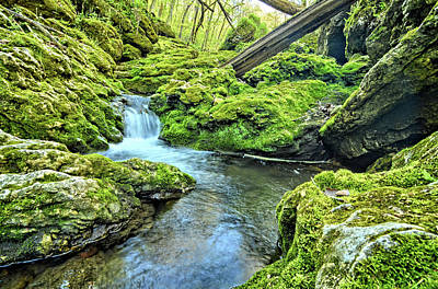 Photograph - Moine Bend by Bonfire Photography