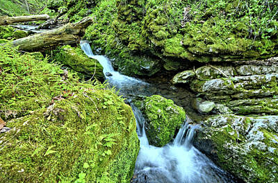 Photograph - Moine Creek 2 by Bonfire Photography