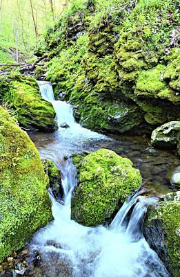 Photograph - Moine Creek 3 by Bonfire Photography