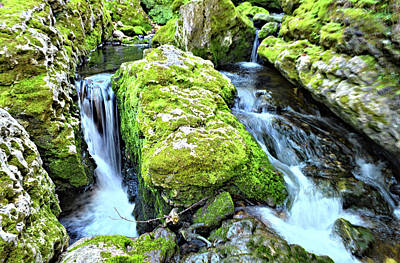 Photograph - Moine Creek Cascade 2 by Bonfire Photography