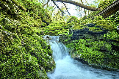 Photograph - Moine Creek Cascade by Bonfire Photography