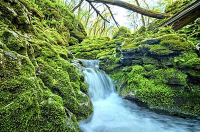 Photograph - Moine Creek Cascade by Bonfire Photography