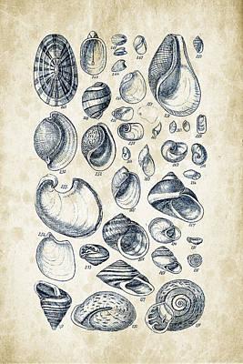 Mollusca Digital Art - Mollusks - 1842 - 13 by Aged Pixel