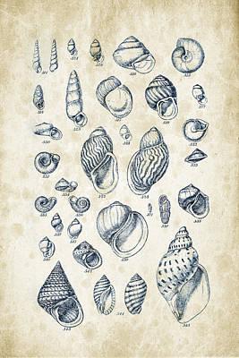 Sea Shells Digital Art - Mollusks - 1842 - 25 by Aged Pixel