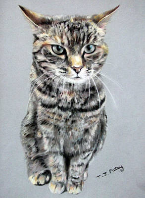 Molly 2 Art Print by Tanya Patey