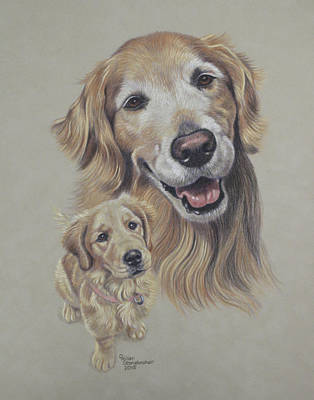 Pup Drawing - Molly Before And After by Debbie Stonebraker