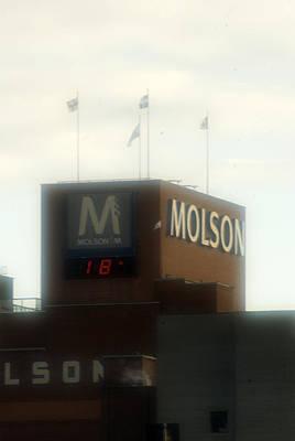 Molsons Beer Photograph - Molson by Francis Hurtubise