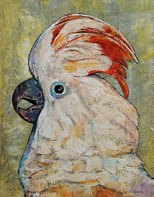 Cockatoo Painting - Moluccan Cockatoo by Michael Creese