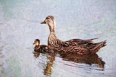 Photograph - Mom And Little One by Deborah Benoit