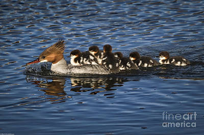 Mom And The Kids Art Print by Mitch Shindelbower