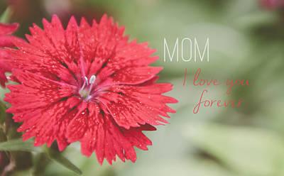 Photograph - Mom I Love You Forever by Andrea Anderegg