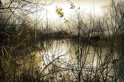 Photograph - Moment by Gina Zhidov