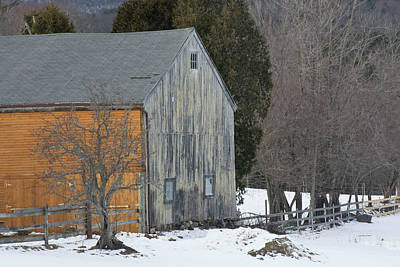 Photograph - Monadnock Barn by Paul Miller