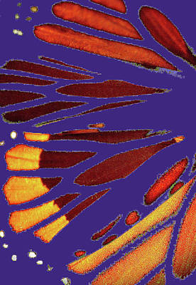 Photograph - Monarch Abstract Purple by Nadalyn Larsen