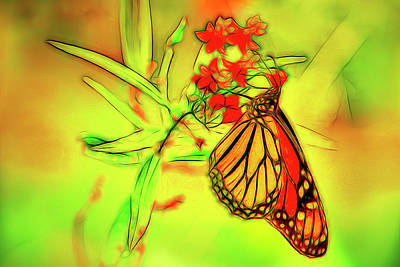 Photograph - Monarch Butterfly Abstract Bright by Kay Brewer