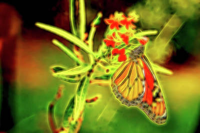 Photograph - Monarch Butterfly Abstract Glow by Kay Brewer