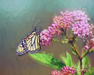 Photograph - Monarch Butterfly Art by Kerri Farley