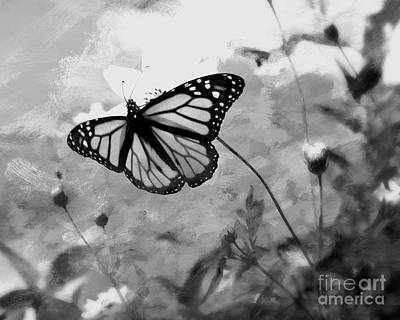 Beautiful Butterfly Photograph - Monarch Butterfly-black And White by Scott Cameron