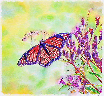 Photograph - Monarch Butterfly - Digital Watercolor by Kerri Farley