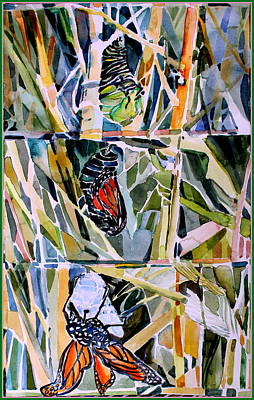 Drawing - Monarch Butterfly Life Cycle by Mindy Newman