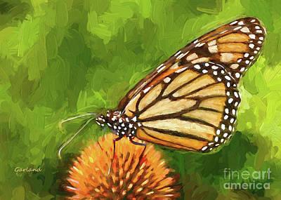 Monarch Butterfly On Yellow Flower IIi Art Print by Garland Johnson