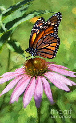 Photograph - Monarch Butterfly Painterly by Barbara McMahon