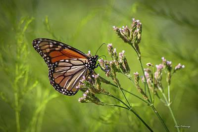 Wanderer Photograph - Monarch Headed South  by Reid Callaway