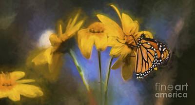 Monarch Art Print by James Taylor