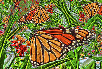 Photograph - Monarch Kaleidoscope  by HH Photography of Florida