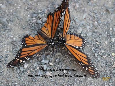 Monarch Love Means Not Getting Squished  Art Print